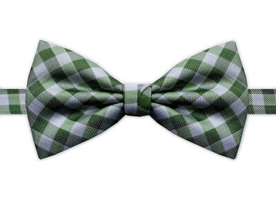 GREEN & WHITE CHECK BOW TIE-0